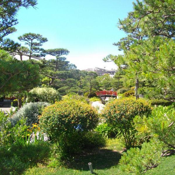 Японската градина в Монако е най-новият и най-дзен